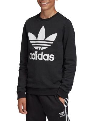 Adidas Junior Trefoil Crew Black/White