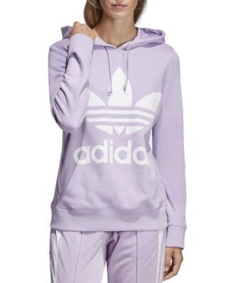 Adidas Trefoil Hoodie Purglo