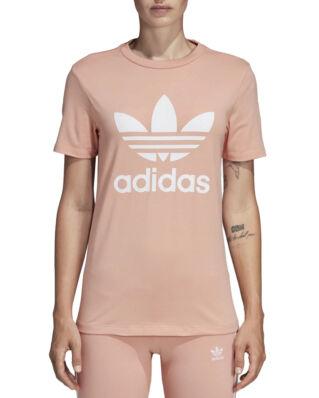 Adidas Trefoil Tee Dust Pink