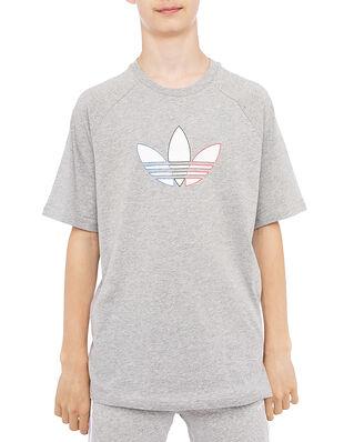 Adidas Tee Mgreyh