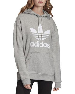 Adidas Trf Hoodie Mgreyh/White