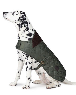 Barbour Barbour Quilted Dog Coat Olive