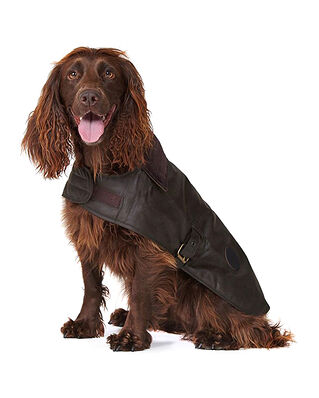 Barbour Barbour Wax Dog Coat Olive