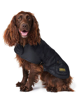 Barbour B.Intl Dog Coat Black