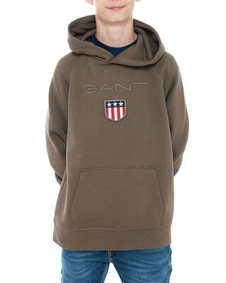 Gant Junior Gant Shield Hoodie Sea Turtle