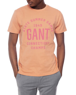 Gant D2. Summer Graphic Ss T-Shirt Pale Coral