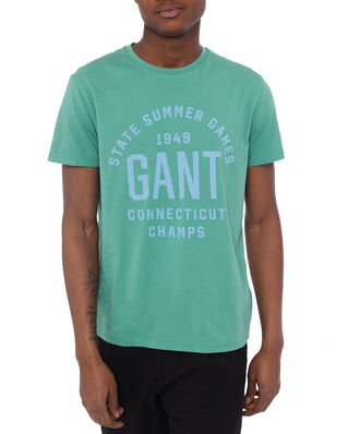 Gant D2. Summer Graphic Ss T-Shirt Peppermint