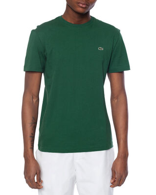 Lacoste TH2038 Green