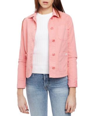 Morris Lady Alba Jacket 32 Pink