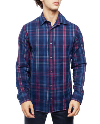 NN07 Errico 5168 Blue Check